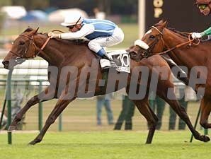 Goldikova wins the 2008 Prix du Moulin