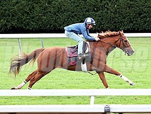 Villandry at Keeneland, October 9, 2014