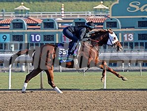 Groupie Doll - 2013 Breeders' Cup, October 30, 2013.