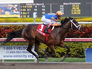Uncle Mo Has GI Infection; Still Derby Bound