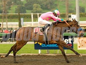 Gabby's Golden Gal wins the 2010 Santa Monica.