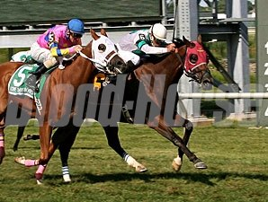 This Ain't No Bull wins the 2013 Marshall Jenney Handicap.