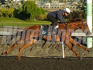 Ancil - Woodbine Race Course, 9/9/2014