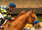 Grade I Winner Misremembered Retired