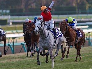 Gold Ship Sails Last to First in Arima Kinen
