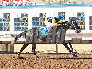 Justanoldsong wins the 2012 SunRay Park and Casino Handicap.
