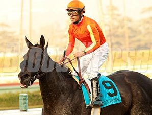 Teddy's Promise wins the 2011 La Brea.
