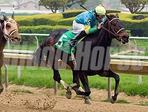 Nicks wins the 2010 Governors Lady Handicap.
