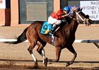 New Mexico Breeders Honor Best of 2011