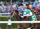 Peace Preserver Upsets Noble Damsel Field
