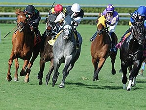 HRRN to Broadcast Florida Sunshine Millions
