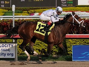 Two Other Graded Races on Kentucky Cup Card