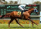 BC Turf Bid Up for Grabs in Del Mar Handicap