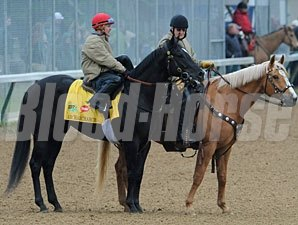 Archarcharch and outrider at Churchill Downs 5/4/2011.