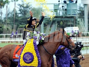 Judy the Beauty wins the Breeders' Cup Filly & Mare Sprint.