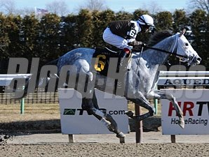 Tempted to Tapit breaks his maiden on January 18, 2010.