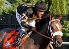 Preakness Winner Oxbow Likely Done for Year