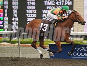 Tu Endie Wei wins the 2011 My Dear Stakes.