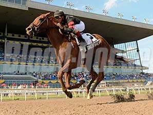 Ginger Brew was the easiest of winners in the June 7 Woodbine Oaks.
