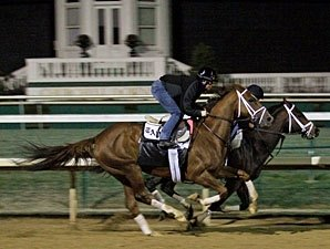 Life At Ten Goes Back to Work at Palm Meadows