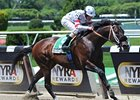 Trickmeister to Tomorrow Bloodstock in NY
