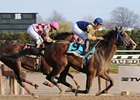 Cherokee Country Gets Up in Fall Heighweight