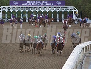 Mucho Macho Man wins the 2013 Breeders' Cup Classic.