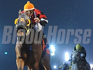 Heitai wins the 2014 LA-Bred Premier Night Sprint.