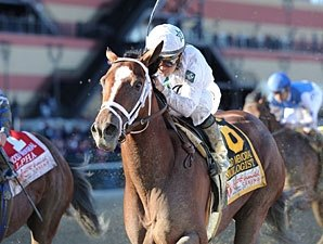 Gemologist, El Padrino Get in Florida Works