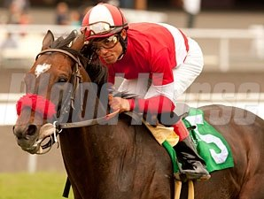 Acclamation wins the 2011 Jim Murray.