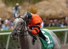 Trio of Graded Stakes on Belmont Park Card