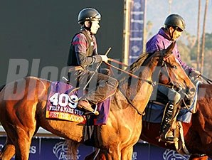 Just the Judge - Breeders' Cup 2014