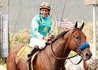 American Pharoah Shows Readiness for Rebel