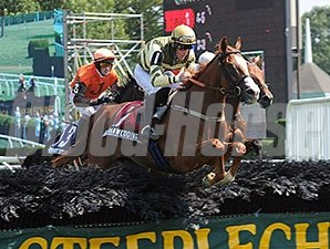 Italian Wedding wins 2013 New York Turf Writer's Cup