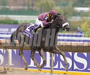 War Pass wins the 2007 Breeders' Cup Juvenile.