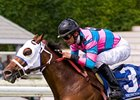 Tough Turf Sprinters in Pa. Governor's Cup