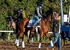 Angela Renee Inside for Juvenile Fillies