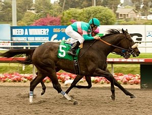 Zenyatta Stands Alone With Record 17th Win
