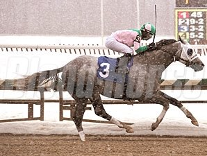 Redding Colliery ridden by Rosie Napravnik wins the $70,000 John Campbell Handicap for older horses at Laurel Park in Maryland on Monday, Feb. 15, 2010.
