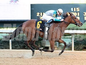 Comedero wins the 2010 Mountain Valley.