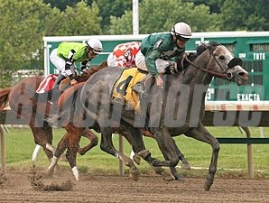 Well Spelled wins the 2012 Jersey Shore Stakes.