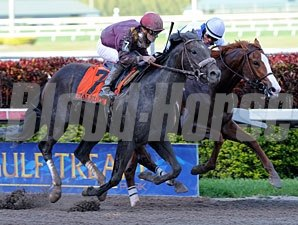 Dialed In (outside) wins the 2011 Florida Derby.