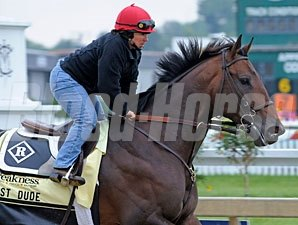 First Dude at Pimlico on May 13, 2010.