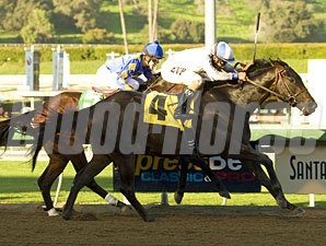 Indian Winter wins the 2011 San Pedro Stakes.