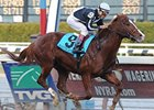 Grade I Winner Bustin Stones Retired