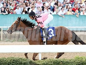 Comedero wins the 2011 No Double Breeders' Stakes.