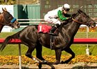 Nonios Battles Liaison Again in Swaps Stakes