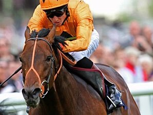 Champion Canford Cliffs Retired to Coolmore
