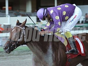 Awesome Feather wins the 2010 Desert Vixen Division of the Florida Stallion Stakes.