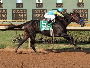 Prayer for Relief Wires Super Derby Field